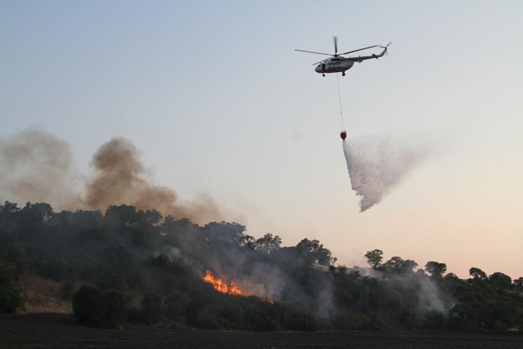 Ayazören Mahallesinde çıkan orman yangınına müdahale devam ediyor