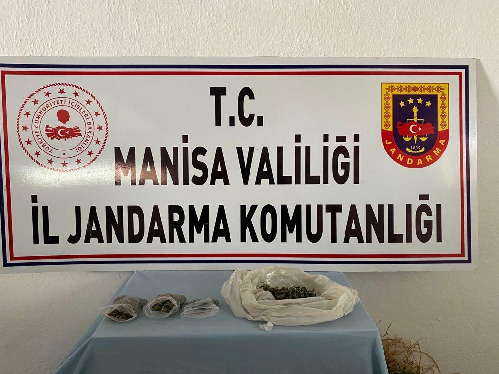 Manisa'da 30 kök Hint keneviri, 25 gr esrar ele geçirildi