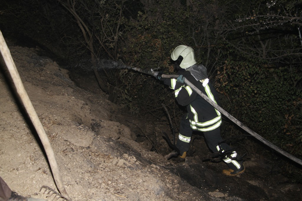 Zeytinlikte başlayan yangın ormanlık alana sıçramadan söndürüldü